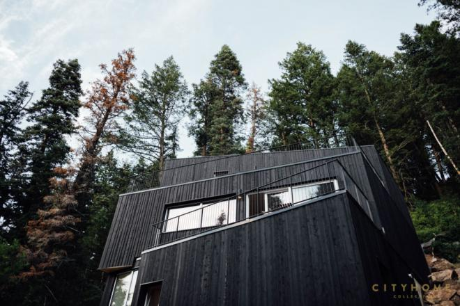 Dom jednorodzinny, TreeHaus, Park City Design + Build